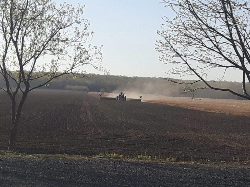 Champ agricole durant les récoltes